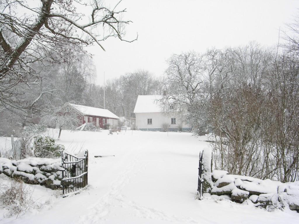 Några dagars snö är man inte bortskämd med.